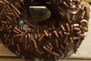 Chocolate Everything Donut