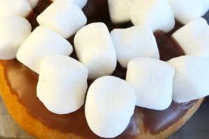 Chocolate Marshmallow Donut